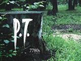 北米PlayStation Storeで『P.T.』が再ダウンロード不可に