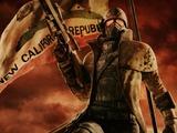 『Fallout: NV』開発者がシリーズ次回作に意欲―「いつでも準備は出来てる」