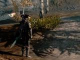 海外ゲーマーが亡くなった弟の遺品『Skyrim』をプレイ、故人が最後に見た景色とは