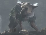 『人喰いの大鷲トリコ』海外商標が2度目の再出願、放棄状態から復活か