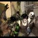 プロデューサーが語る開発への経緯、『LEFT 4 DEAD -生存者たち-』ロケーションテスト体験レポート
