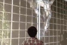 【TGS 15】ゲームショウで実物大の『人喰いの大鷲トリコ』に会える!