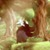 Xbox One/PC向け新作ADV『Ori and the Blind Forest』2015年初頭にリリース延期への画像