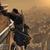 英国大学生が『Assassin's Creed』物理挙動を考察―「干し草ダイブ」は実現不可の画像