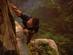 息をのむ美しさ…海外フォーラムで『Uncharted 4』フォトコンテスト開催中【ネタバレ注意】
